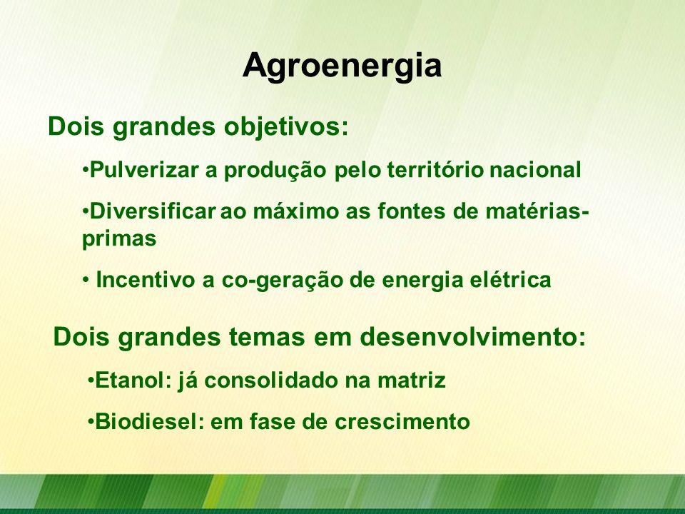 Agroenergia Temas a serem desenvolvidos: Biogás Biocombustíveis de aviação Aproveitamento de resíduos para a geração de energia Algas na geração de energia.