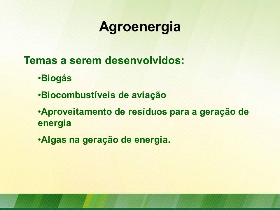 Agroenergia Cana-de-açúcar Etanol Bioeletricidade Outras aplicações energéticas Fontes lipídicas Biodiesel Óleo Vegetal Bioquerosene Florestas energéticas Carvão Vegetal Briquetes Peletes Lenha Resíduos e Dejetos Biogás Biomassa Fonte: BEN 2010/EPE/MME Elaboração: SPAE/MAPA