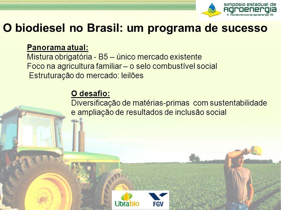 O desafio: Diversificação de matérias-primas com sustentabilidade e ampliação de resultados de inclusão social O biodiesel no Brasil: um programa de s