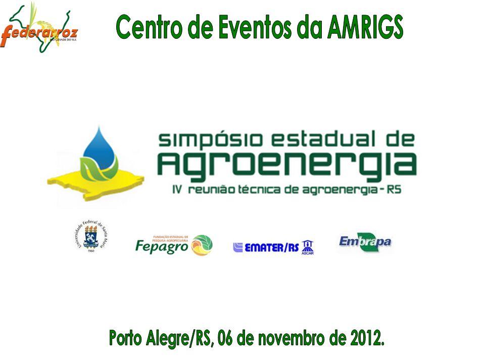Painel 3: A situação da produção de etanol no Rio Grande do Sul Usinas e Projetos
