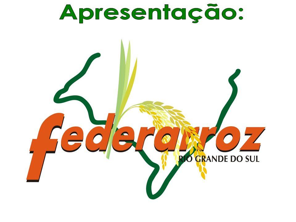 HIDRATADO ANIDRO INDÚSTRIA ALCOOL QUÍMICA POTÁVEL E ALIMENTÍCIA 44 Matéria- Prima (Cereais) Produtos - Etanol Produtos ETANOL Conceito do Projeto Produtos