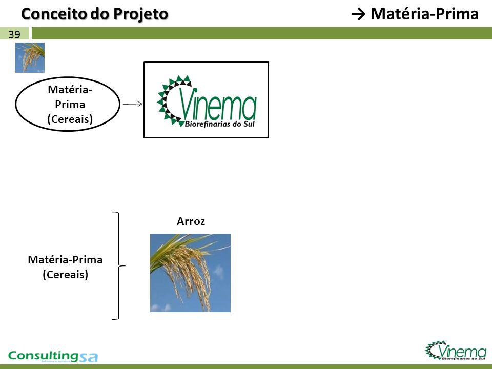 39 Conceito do Projeto Matéria- Prima (Cereais) Matéria-Prima (Cereais) Arroz Matéria-Prima