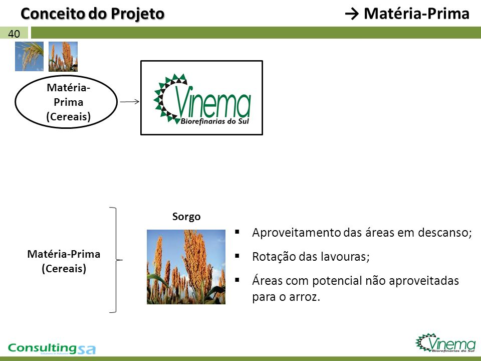 40 Matéria- Prima (Cereais) Matéria-Prima (Cereais) Sorgo Aproveitamento das áreas em descanso; Rotação das lavouras; Áreas com potencial não aproveit
