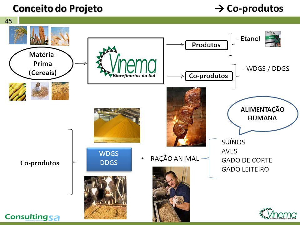 45 Matéria- Prima (Cereais) Co-produtos Conceito do Projeto Conceito do Projeto Co-produtos - Etanol Produtos WDGS DDGS WDGS DDGS RAÇÃO ANIMAL SUÍNOS
