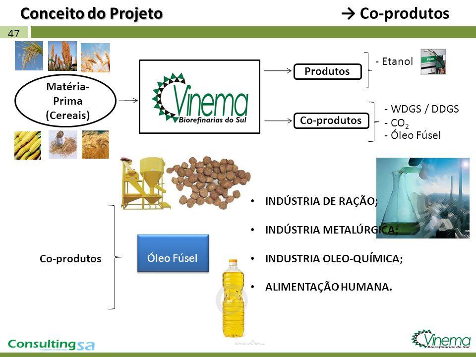 47 Matéria- Prima (Cereais) Co-produtos Conceito do Projeto Conceito do Projeto Co-produtos - Etanol Produtos - WDGS / DDGS Co-produtos Óleo Fúsel - C
