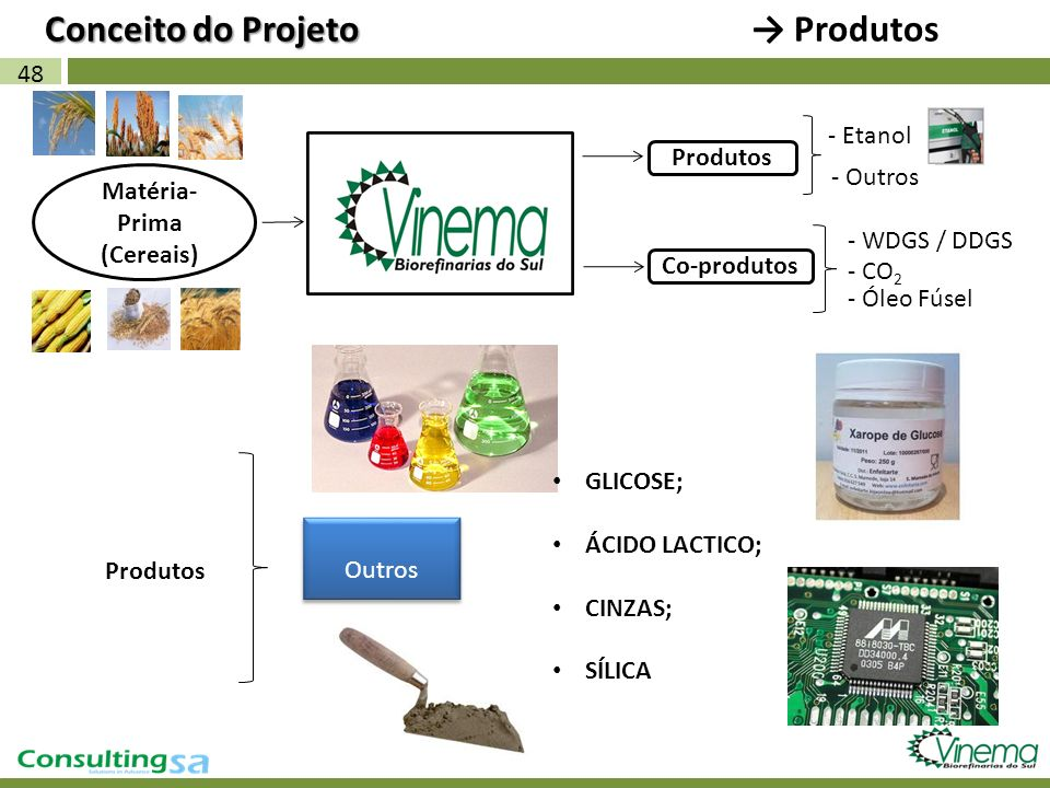 48 Matéria- Prima (Cereais) Produtos Conceito do Projeto Conceito do Projeto Produtos - Etanol Produtos - WDGS / DDGS Co-produtos Outros - CO 2 - Óleo