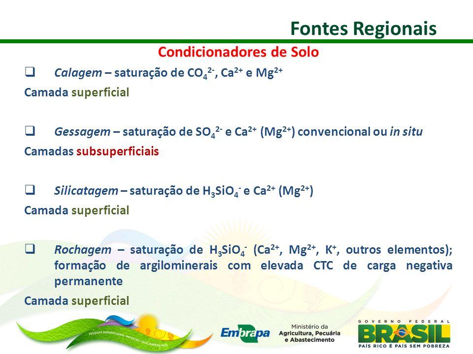 Condicionadores de Solo Calagem – saturação de CO 4 2-, Ca 2+ e Mg 2+ Camada superficial Gessagem – saturação de SO 4 2- e Ca 2+ (Mg 2+ ) convencional