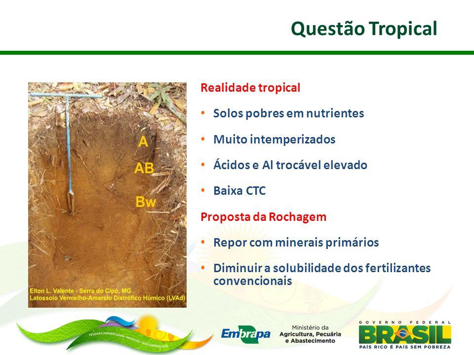 Realidade tropical Solos pobres em nutrientes Muito intemperizados Ácidos e Al trocável elevado Baixa CTC Proposta da Rochagem Repor com minerais prim