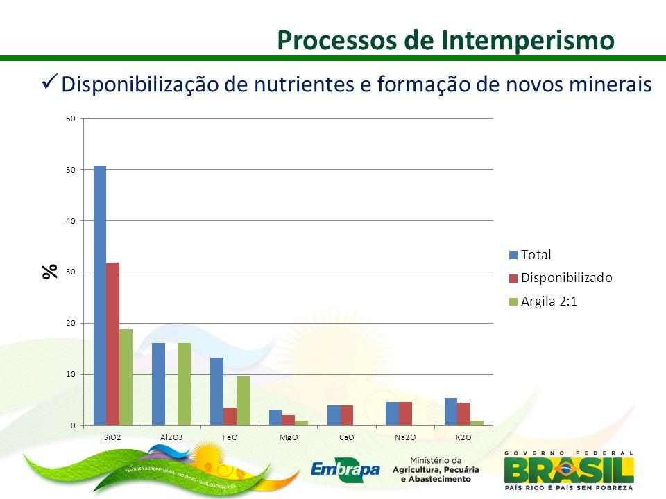 Disponibilização de nutrientes e formação de novos minerais Processos de Intemperismo