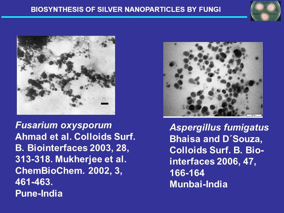 Fusarium oxysporum Ahmad et al. Colloids Surf. B. Biointerfaces 2003, 28, 313-318. Mukherjee et al. ChemBioChem. 2002, 3, 461-463. Pune-India Aspergil