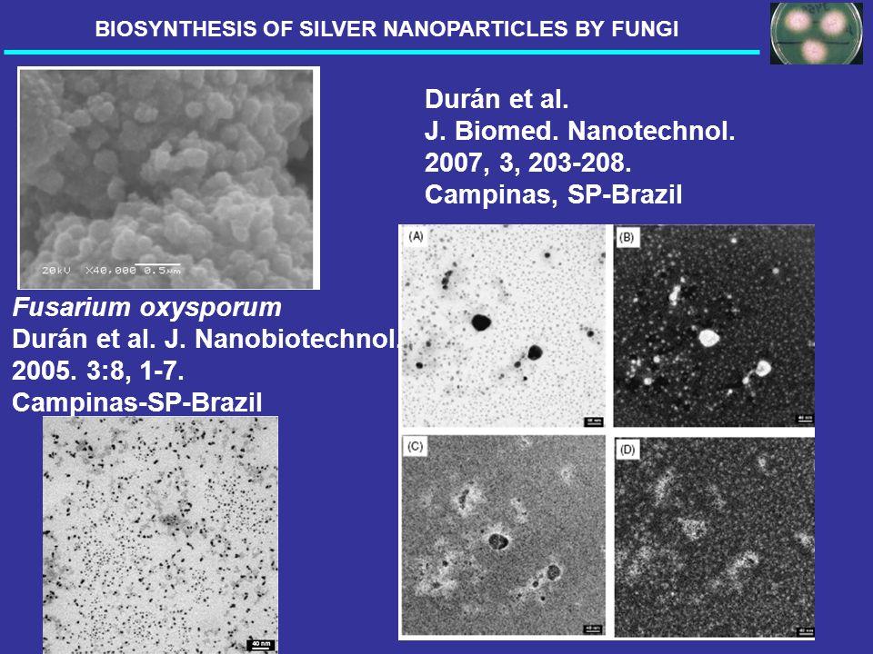 Fusarium oxysporum Durán et al. J. Nanobiotechnol. 2005. 3:8, 1-7. Campinas-SP-Brazil Durán et al. J. Biomed. Nanotechnol. 2007, 3, 203-208. Campinas,