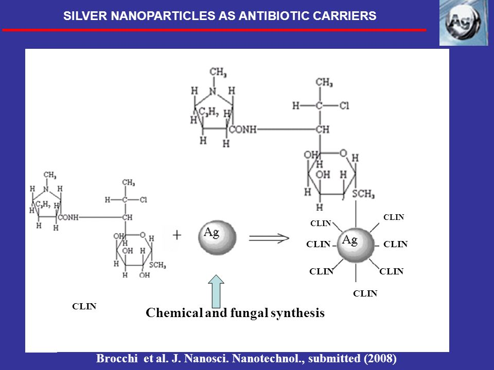 CLIN Chemical and fungal synthesis Brocchi et al. J. Nanosci. Nanotechnol., submitted (2008) SILVER NANOPARTICLES AS ANTIBIOTIC CARRIERS