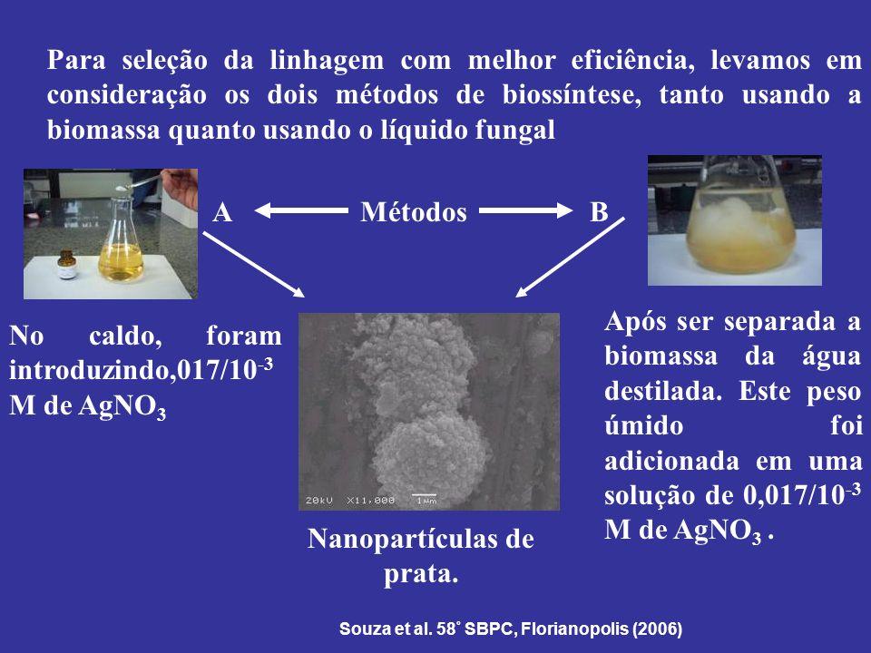Para seleção da linhagem com melhor eficiência, levamos em consideração os dois métodos de biossíntese, tanto usando a biomassa quanto usando o líquid