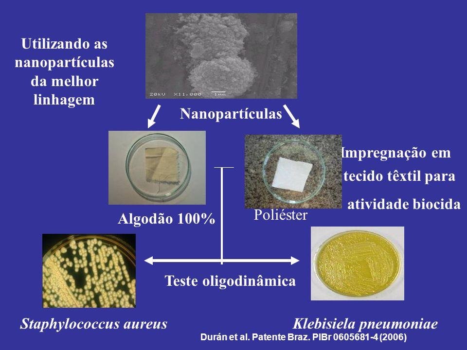 Staphylococcus aureusKlebisiela pneumoniae Algodão 100% Poliéster Nanopartículas Impregnação em tecido têxtil para atividade biocida Teste oligodinâmi