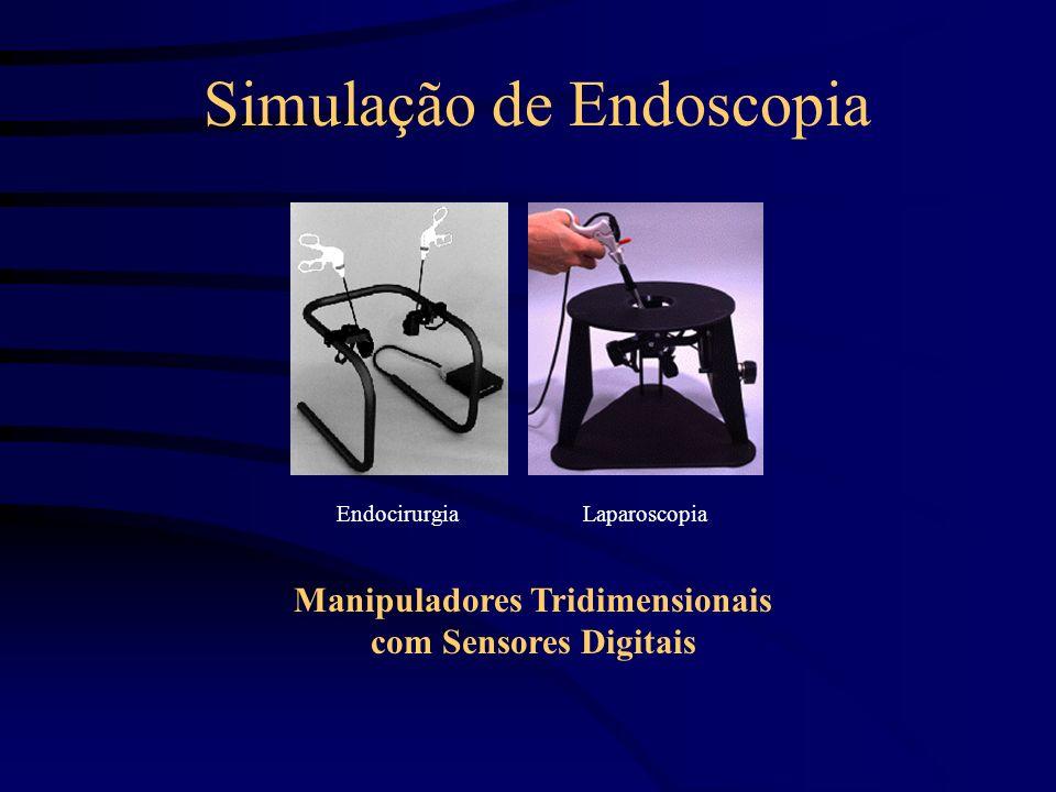 Simulação de Endoscopia Manipuladores Visualizadores