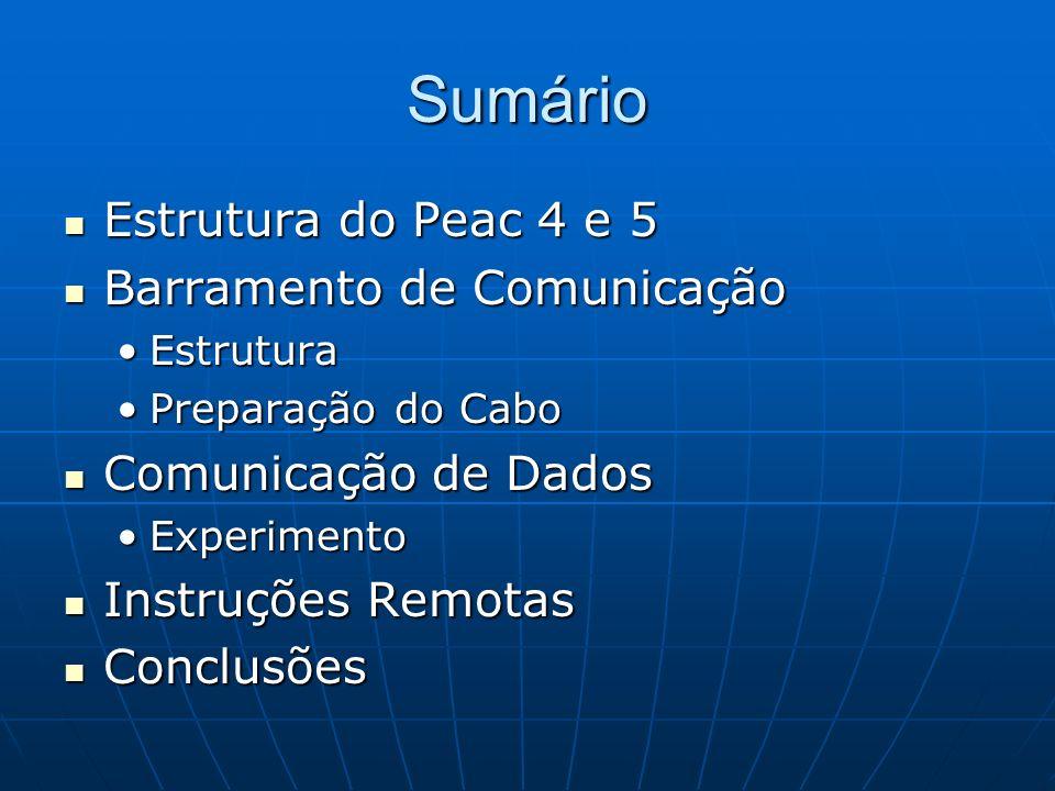 Sumário Estrutura do Peac 4 e 5 Estrutura do Peac 4 e 5 Barramento de Comunicação Barramento de Comunicação EstruturaEstrutura Preparação do CaboPrepa