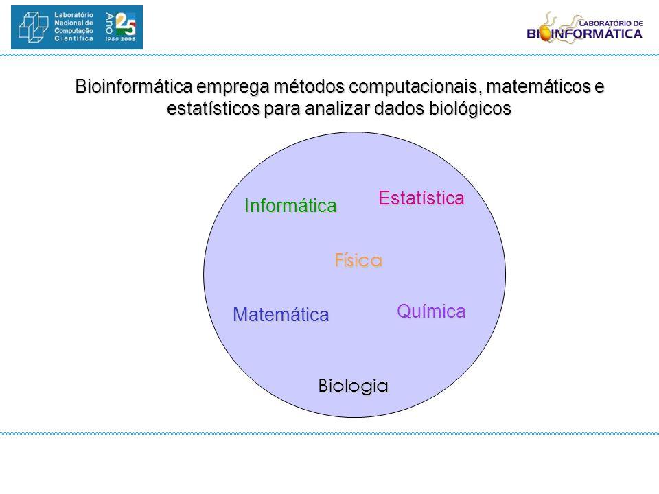 Bioinformática emprega métodos computacionais, matemáticos e estatísticos para analizar dados biológicos Informática Estatística Química Matemática Fí