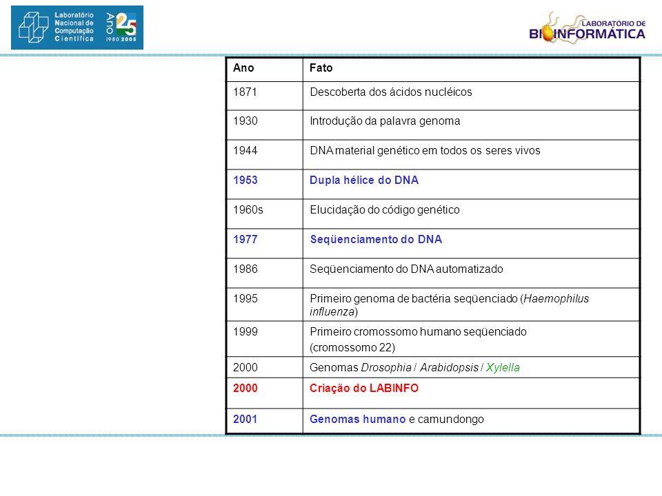 AnoFato 1871Descoberta dos ácidos nucléicos 1930Introdução da palavra genoma 1944DNA material genético em todos os seres vivos 1953Dupla hélice do DNA