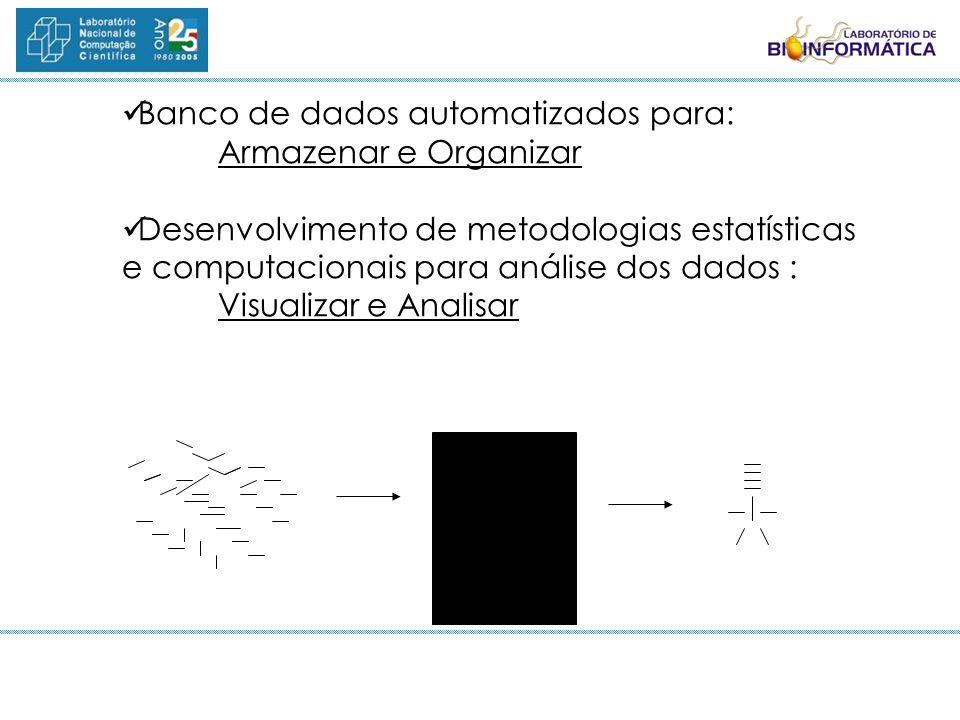 Banco de dados automatizados para: Armazenar e Organizar Desenvolvimento de metodologias estatísticas e computacionais para análise dos dados : Visual