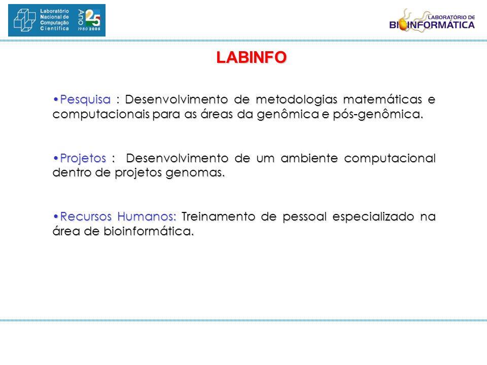 PesquisaDesenvolvimento de metodologias matemáticas e computacionais para as áreas da genômica e pós-genômica.Pesquisa : Desenvolvimento de metodologi