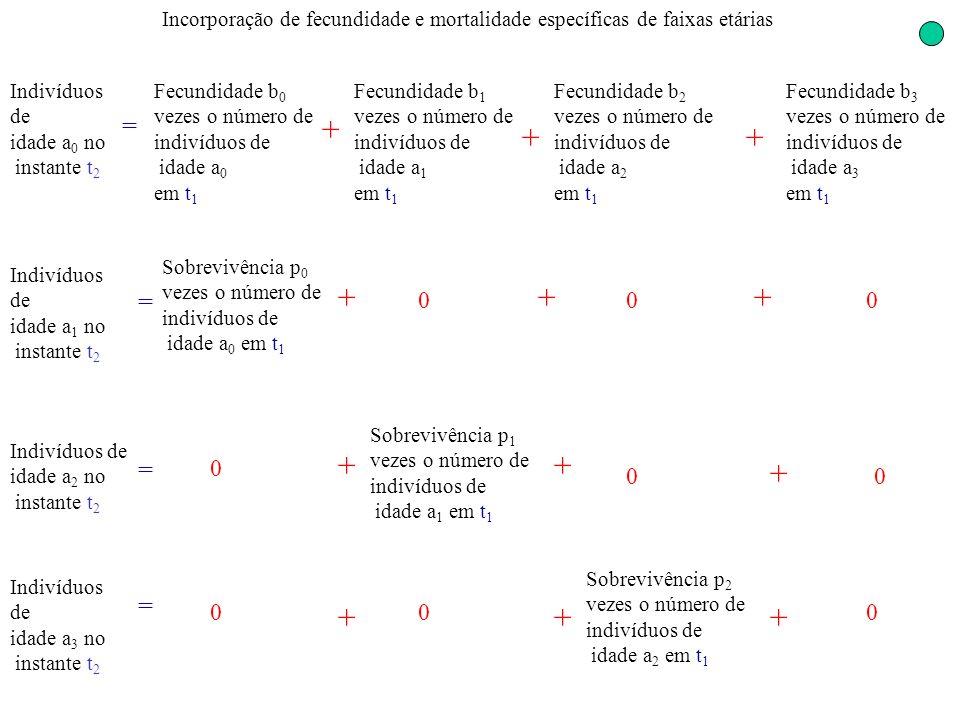 Incorporação de fecundidade e mortalidade específicas de faixas etárias 0 Indivíduos de idade a 2 no instante t 2 = Sobrevivência p 1 vezes o número d