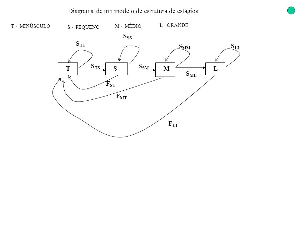 Diagrama de um modelo de estrutura de estágios TSML S TS S SS S TT F ST F LT F MT S ML S MM S SM S LL T - MINÚSCULO S - PEQUENO M - MÉDIO L - GRANDE