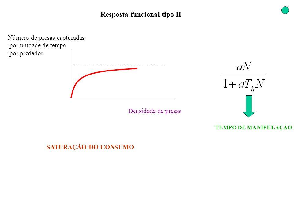 Resposta funcional tipo II Densidade de presas Número de presas capturadas por unidade de tempo por predador SATURAÇÃO DO CONSUMO TEMPO DE MANIPULAÇÃO