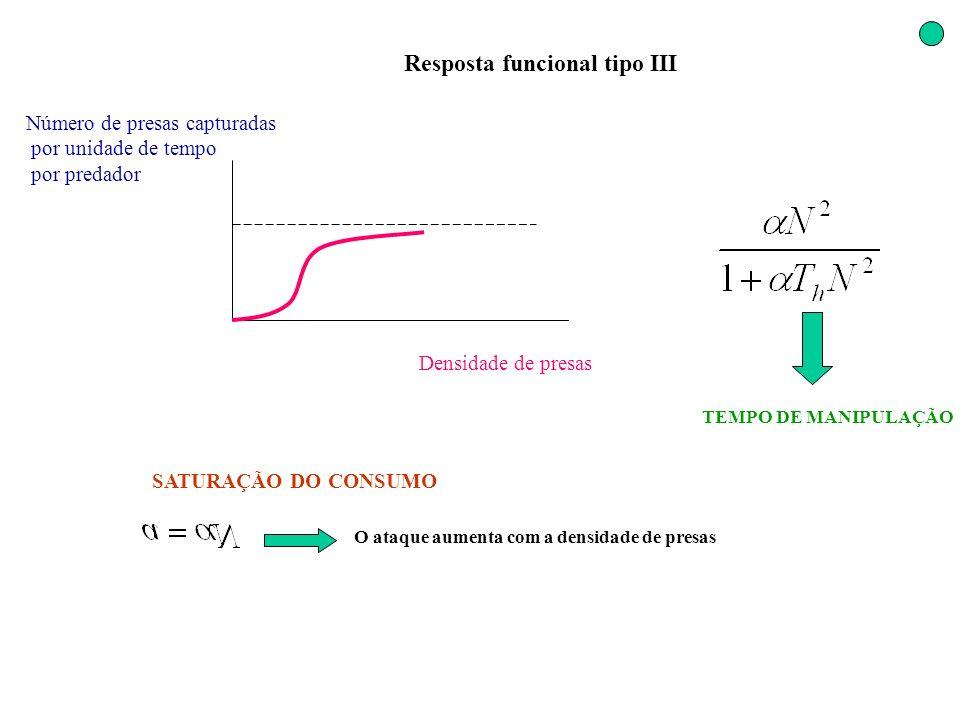 Resposta funcional tipo III Densidade de presas Número de presas capturadas por unidade de tempo por predador SATURAÇÃO DO CONSUMO TEMPO DE MANIPULAÇÃ