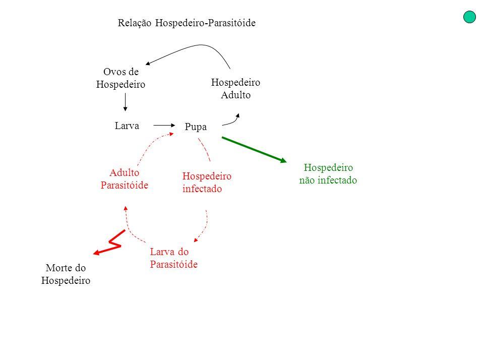 Relação Hospedeiro-Parasitóide Ovos de Hospedeiro Larva Pupa Hospedeiro infectado Adulto Parasitóide Morte do Hospedeiro Larva do Parasitóide Hospedei