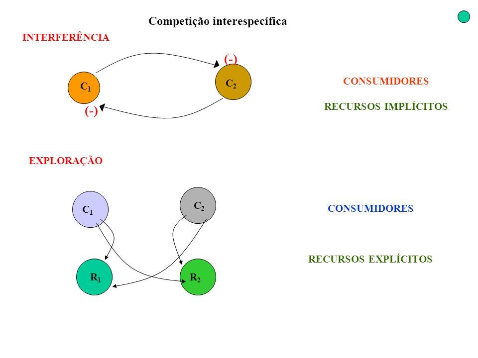 Competição interespecífica C1C1 C2C2 INTERFERÊNCIA R1R1 C2C2 C1C1 R2R2 (-) EXPLORAÇÃO CONSUMIDORES RECURSOS IMPLÍCITOS CONSUMIDORES RECURSOS EXPLÍCITO