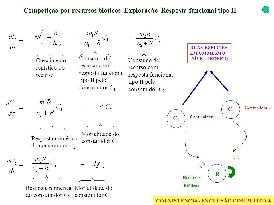 Competição por recursos bióticos Exploração Resposta funcional tipo II (-) Resposta numérica do consumidor C 2 Crescimento logístico do recurso Consum