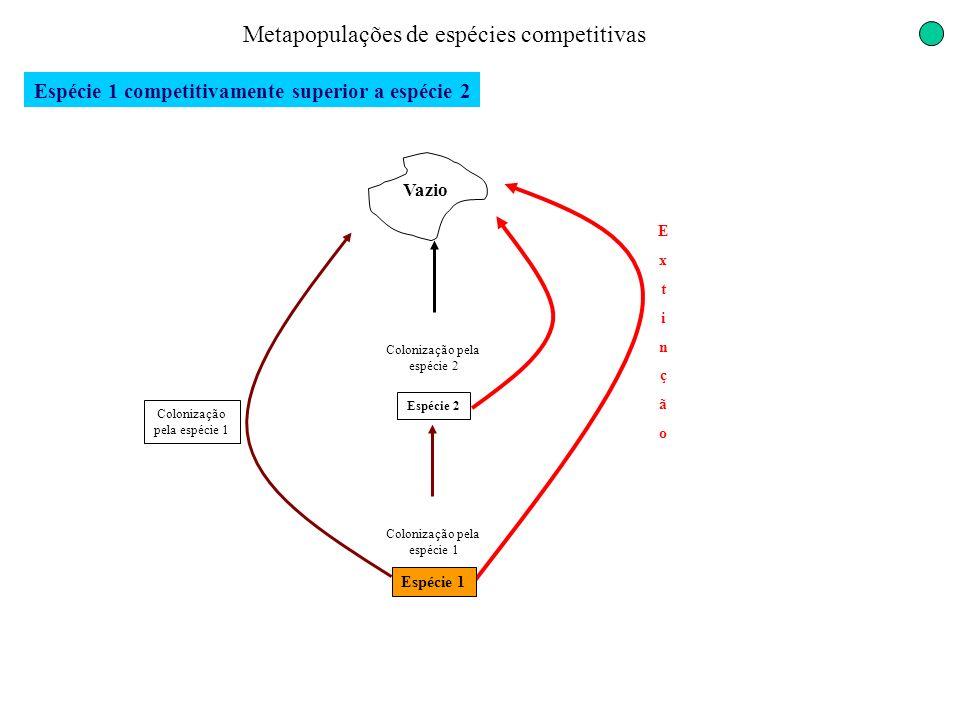 ExtinçãoExtinção Metapopulações de espécies competitivas Espécie 1 competitivamente superior a espécie 2 Vazio Colonização pela espécie 1 Espécie 2 Co