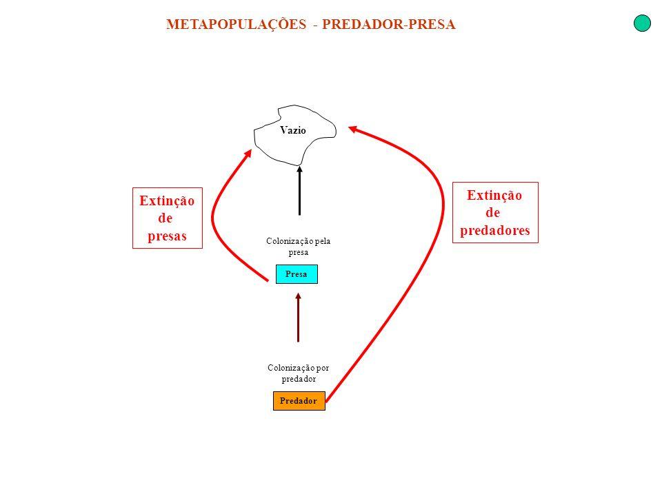 METAPOPULAÇÕES - PREDADOR-PRESA Vazio Colonização por predador Presa Predador Colonização pela presa Extinção de predadores Extinção de presas
