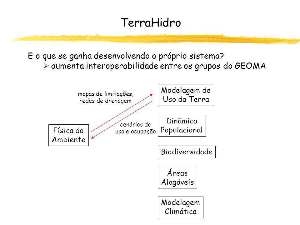 TerraHidro E o que se ganha desenvolvendo o próprio sistema.