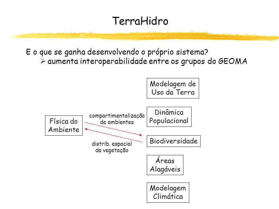 definição de áreas inundáveis (máscara) áreas de influência, vazão TerraHidro E o que se ganha desenvolvendo o próprio sistema.