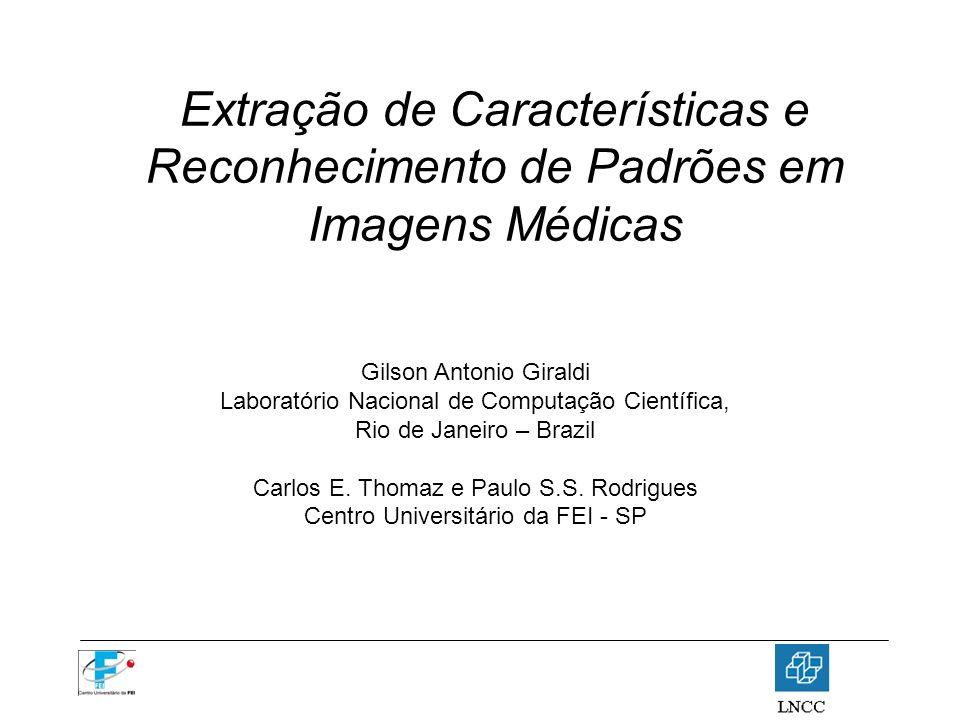 Extração de Características e Reconhecimento de Padrões em Imagens Médicas Gilson Antonio Giraldi Laboratório Nacional de Computação Científica, Rio d