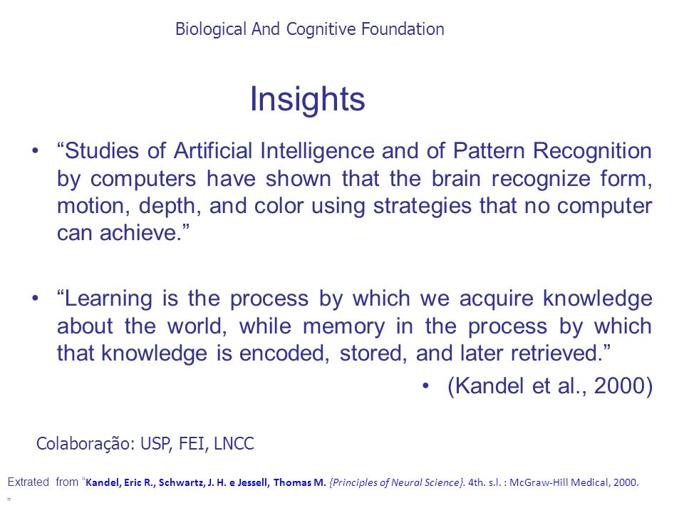 Insights Studies of Artificial Intelligence and of Pattern Recognition by computers have shown that the brain recognize form, motion, depth, and color