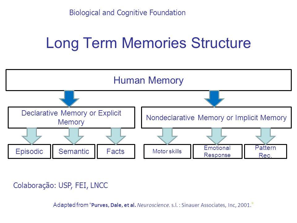 Biological and Cognitive Foundation Adapted from Purves, Dale, et al. Neuroscience. s.l. : Sinauer Associates, Inc, 2001. Human Memory Declarative Mem