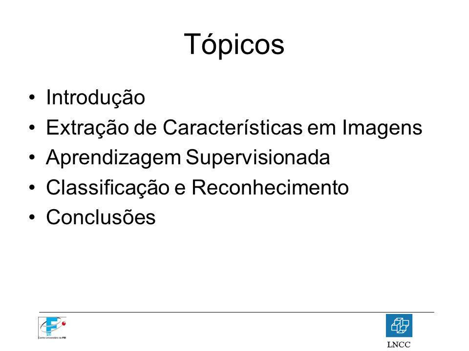 Tópicos Introdução Extração de Características em Imagens Aprendizagem Supervisionada Classificação e Reconhecimento Conclusões