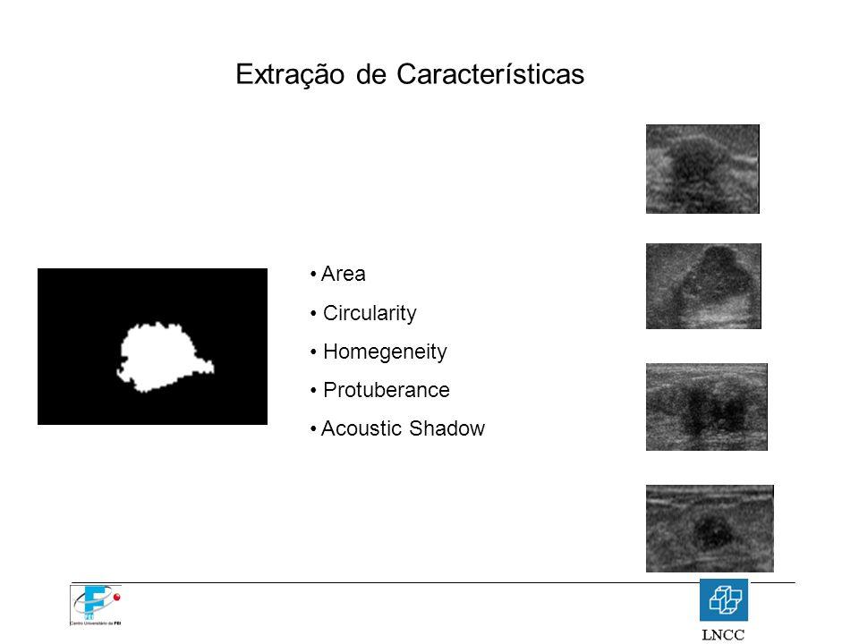 Extração de Características Area Circularity Homegeneity Protuberance Acoustic Shadow