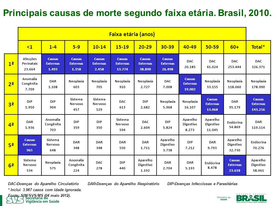 Óbitos por Causas Externas – Brasil, 2010 AT-Acidentes de Transporte CE-Causas Externas Outras CE-Inclui quedas, afogamentos, queimaduras *Incluir 2.132casos com idade ignorada.