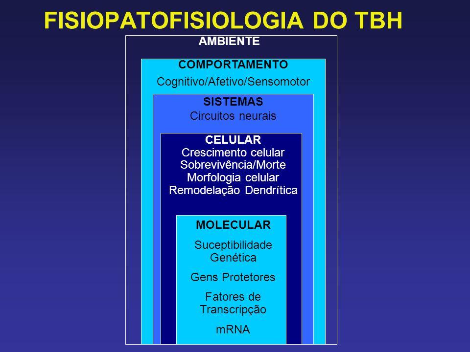 FISIOPATOFISIOLOGIA DO TBH AMBIENTE COMPORTAMENTO Cognitivo/Afetivo/Sensomotor SISTEMAS Circuitos neurais CELULAR Crescimento celular Sobrevivência/Mo