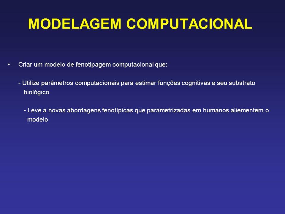 MODELAGEM COMPUTACIONAL Criar um modelo de fenotipagem computacional que: - Utilize parâmetros computacionais para estimar funções cognitivas e seu substrato biológico - Leve a novas abordagens fenotípicas que parametrizadas em humanos aliementem o modelo