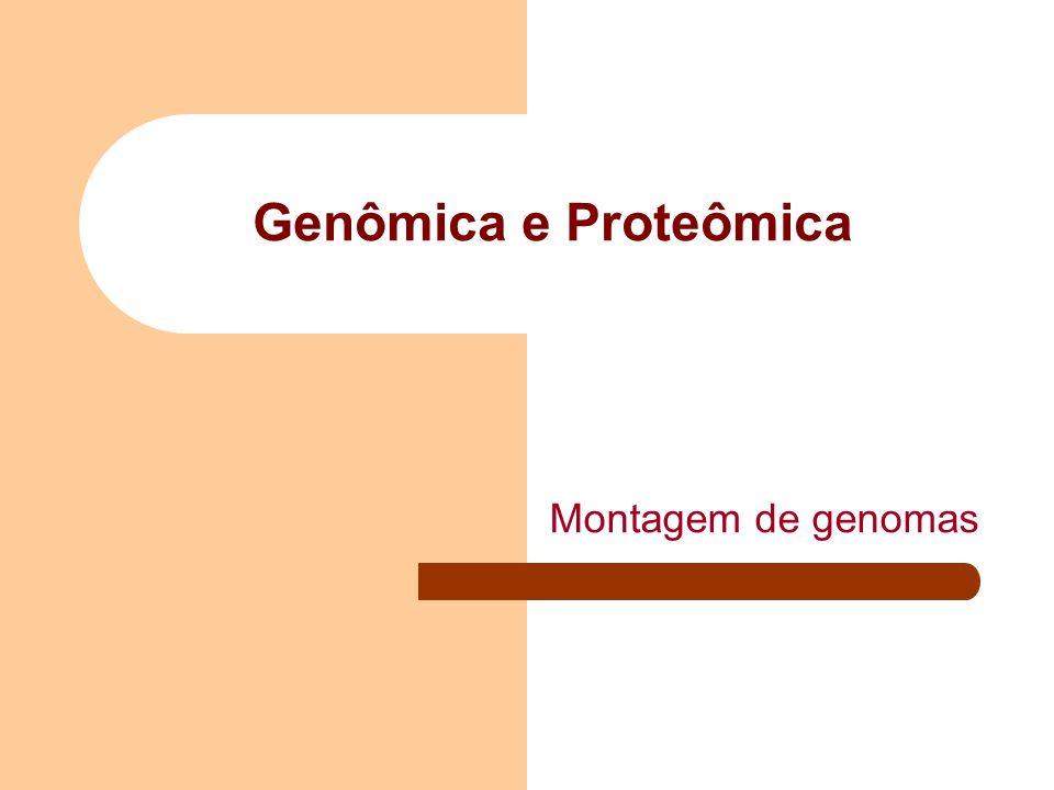 Genômica e Proteômica Montagem de genomas