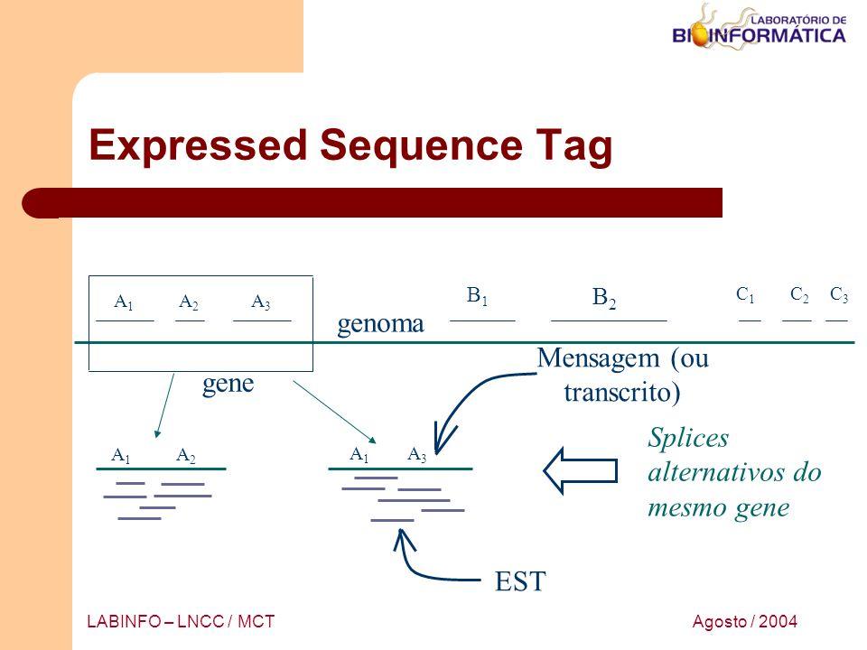 Agosto / 2004LABINFO – LNCC / MCT Expressed Sequence Tag A1A1 A2A2 A3A3 B1B1 B2B2 C1C1 C2C2 C3C3 A1A1 A3A3 A1A1 A2A2 EST gene genoma Mensagem (ou tran