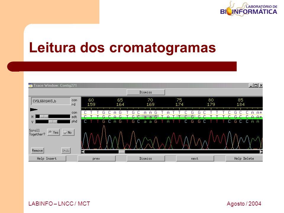 Agosto / 2004LABINFO – LNCC / MCT Leitura dos cromatogramas