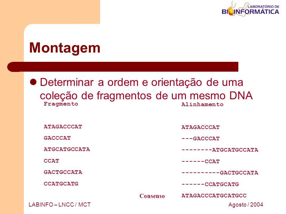 Agosto / 2004LABINFO – LNCC / MCT Montagem Determinar a ordem e orientação de uma coleção de fragmentos de um mesmo DNA Fragmento ATAGACCCAT GACCCAT A