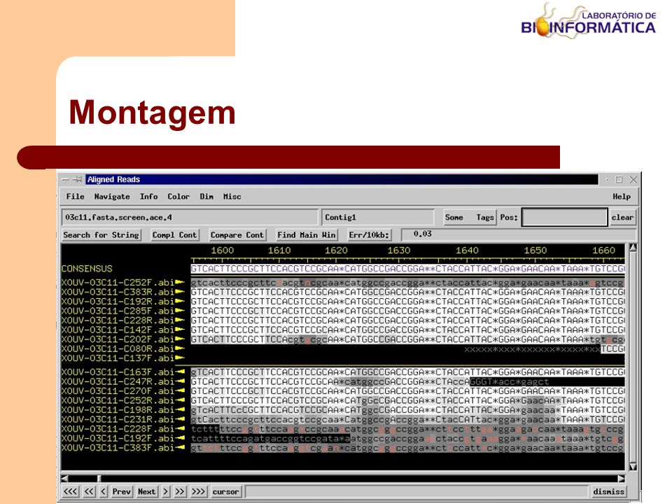 Agosto / 2004LABINFO – LNCC / MCT Montagem