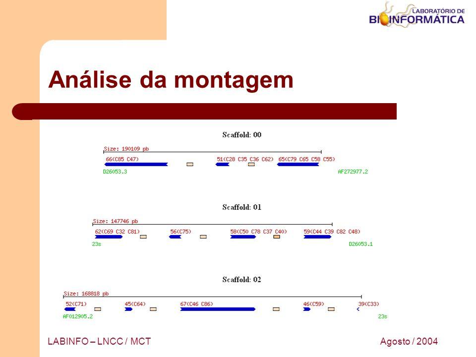 Agosto / 2004LABINFO – LNCC / MCT Análise da montagem