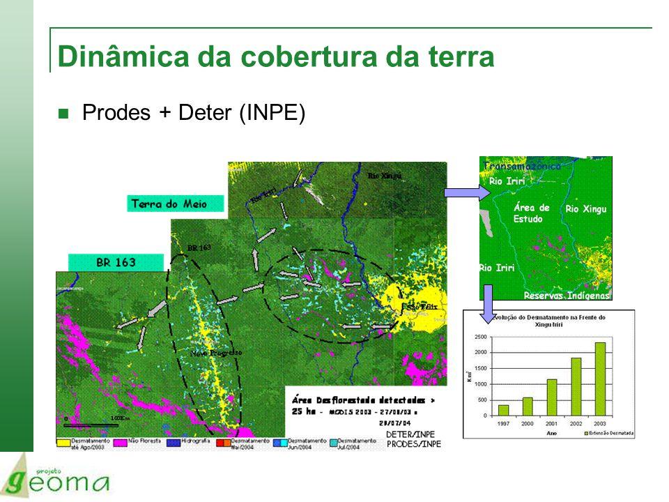 Dinâmica da cobertura da terra Prodes + Deter (INPE)